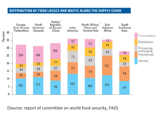 India Wastes As Much Food As United Kingdom Consumes Study